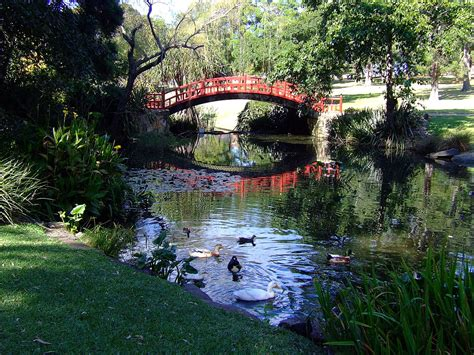wollongong botanic garden wikipedia