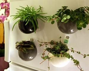 Pot Pour Plante : plante aimantee ~ Teatrodelosmanantiales.com Idées de Décoration