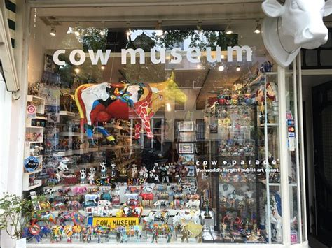 Tripadvisor Amsterdam Museum by Cow Museum Amsterdam The Netherlands Picture Of Cow