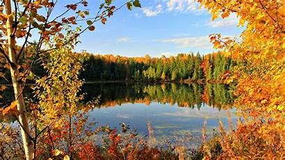 Autumn Nature Shades Different Wallpapers Fall Lake