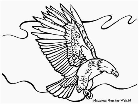 gambar mewarnai burung rajawali