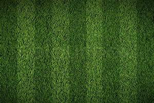 Soccer or football grass field Stock Photo Colourbox