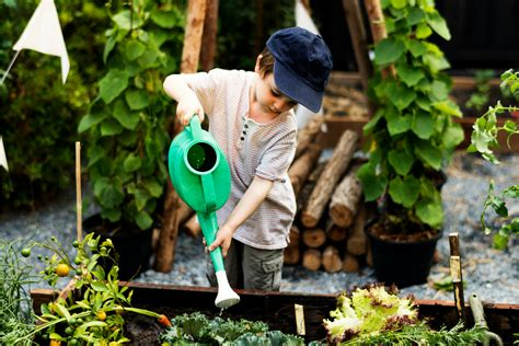 How To Make A Vegetable Garden For Kids Montessori