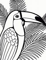 Coloring Pages Bird Parrot Tree Coconut Printable Sheet Birds Detailed Sheets Print Colorier Dessin Coloriage Drawings Cute Penguin Fish Coloringpagesfortoddlers sketch template