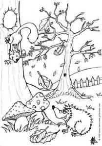 Kleurplaat Herfst Eekhoorn by Kleurplaat Herfst Egel En Eekhoorn Afb 6444