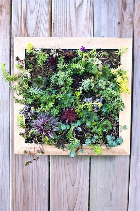 Vertical Garden Tutorial by Diy Vertical Garden Vertical Succulent Garden Tutorial