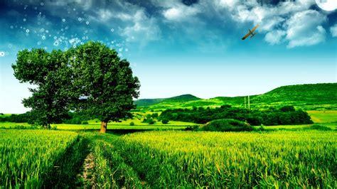 Permalink to Nature Wallpaper In Full Hd
