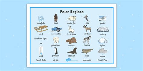 Polar Regions Word Mat  Polar Regions Word Mat, Polar Regions, Polar Region