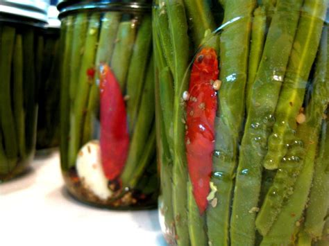 img  pickled green beans canning recipes green beans