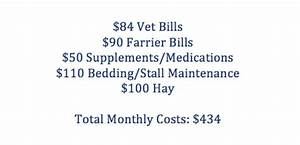 what is the cost of owning a horse cost of feed vet With cost to board a horse