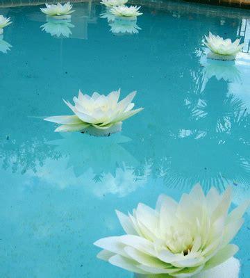 pin  swimmingpools  pool decorating ideas