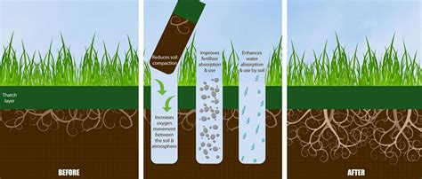benefits of lawn aeration benefits of core aeration and overseeding