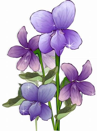 Anime Flower Transparent Flowers Purple Fleurs Flores