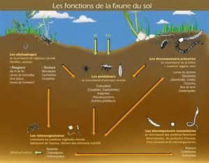 Ph Du Sol : le sol hortidact ~ Melissatoandfro.com Idées de Décoration