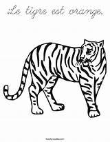 Coloring Tigre Est Le Orange Cursive Built California Usa sketch template