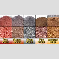 Why It's Important To Use Mulch!  Roanoke Landscapes