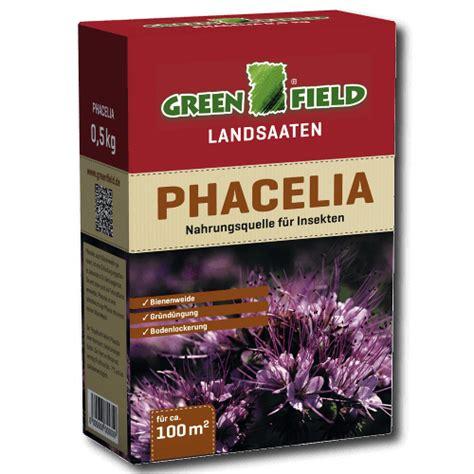 dünger für thuja greenfield phacelia gr 195 188 nd 195 188 nger