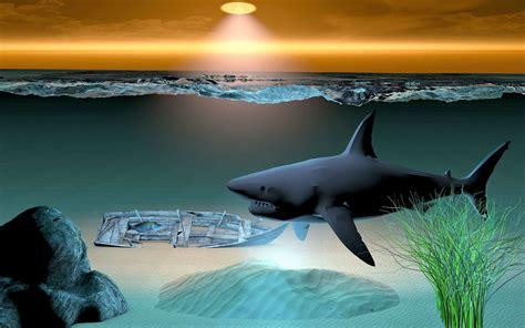 kostenlose bild meer wasser meer unterwasser hai