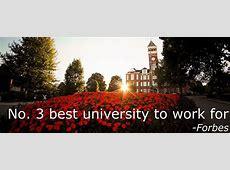 Employment Clemson University
