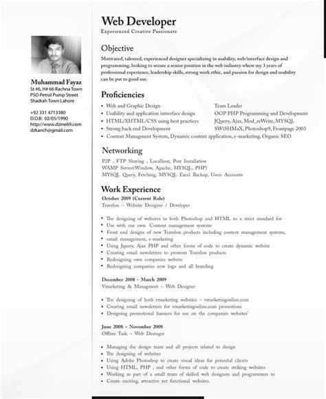 curicculum vitae professional cv resume cv template examples