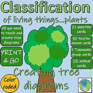Classification Of Green Plants  No