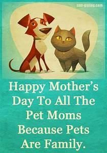 Happy Mothers Day to all the pet moms because pets are ...