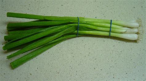 what is a scallion file scallion jpg