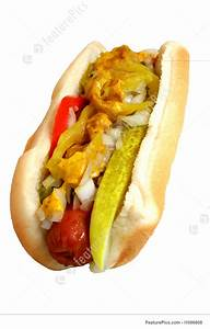 Chicago Dog Picture
