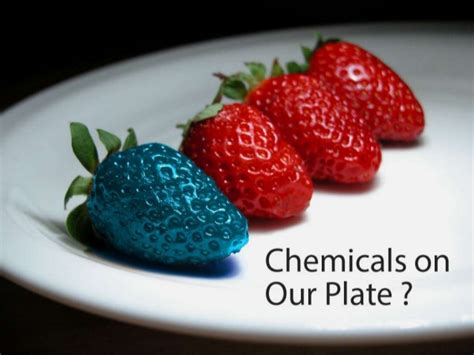 Chemical Food On Our Plate