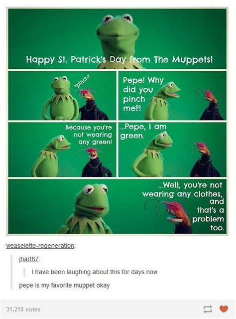 St Patrick Day Memes - muppets st patrick s day tumblr know your meme