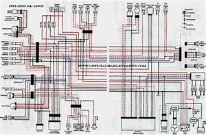 Softail Wiring Diagram