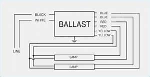 Philips Advance Ballast Wiring Diagram  U2013 Moesappaloosas Com
