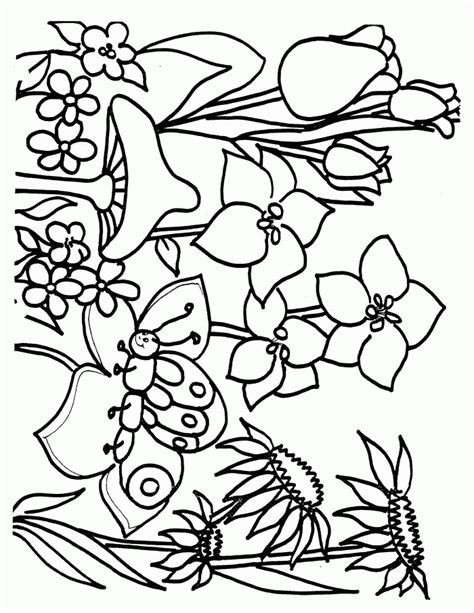Flower Color Sheet by Flower Page Printable Coloring Sheets Coloring
