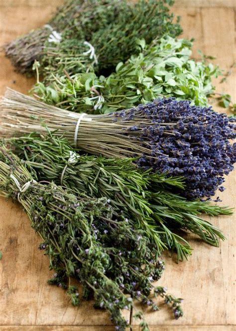 Recettes Herbes De Provence