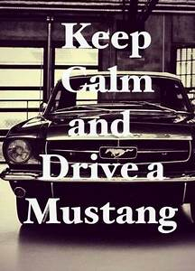 Keep Calm and Drive a Mustang | Ford mustang, Mustang, Mustang cars