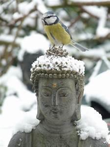 Buddha Bilder Gemalt : buddha gifs bilder buddha bilder buddha animationen ~ Markanthonyermac.com Haus und Dekorationen