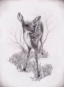 Baby deer illustration   Illustration   Pinterest