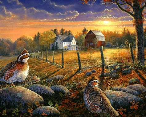 sunset  country life  sam timm country charm