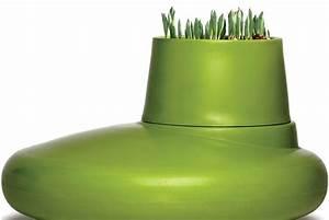 Palmen Für Drinnen : l mmeln unter palmen gr nes design f r den wohnraum pflanzen f r menschen ~ Bigdaddyawards.com Haus und Dekorationen