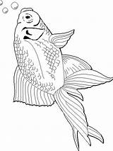 Goldfish Coloring Printable Fish Getcolorings Recommended Goldfishes sketch template