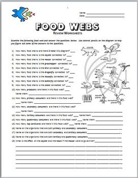 Food Webs  Review Worksheet {editable} By Tangstar Science Tpt