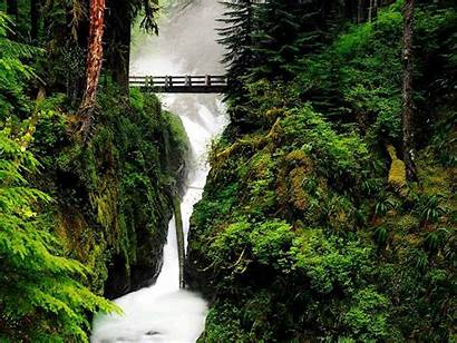 Nature Wallpapers Friendly Eco Beautifull Backgrounds Kinds