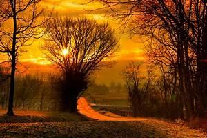 Autumn Sunset Photos 08252 - Baltana
