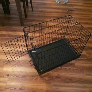 medium sized dog crate esquimalt view royal victoria With medium size dog crate