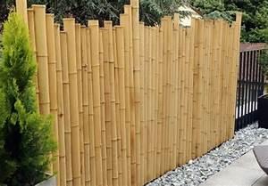 Bambou Pour Haie Brise Vue : nos conseils pour se cacher d 39 un vis vis ~ Premium-room.com Idées de Décoration