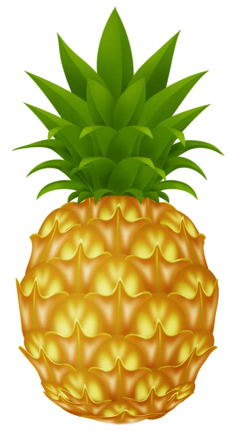 pineapple png picture gallery yopriceville high quality images