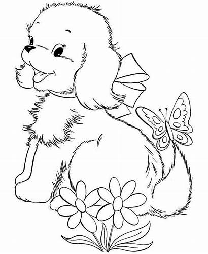 Coloring Dog Puppy Butterfly Playing Pages Dogs