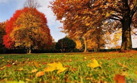 Brauksi baudīt zelta rudeni Siguldā, Cēsīs vai Valmierā ...
