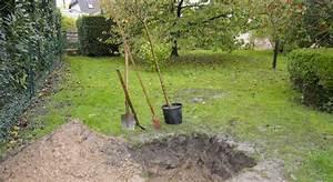 Quand Planter Lavande Dans Jardin : la bonne saison pour planter des arbres fruitiers ~ Dode.kayakingforconservation.com Idées de Décoration