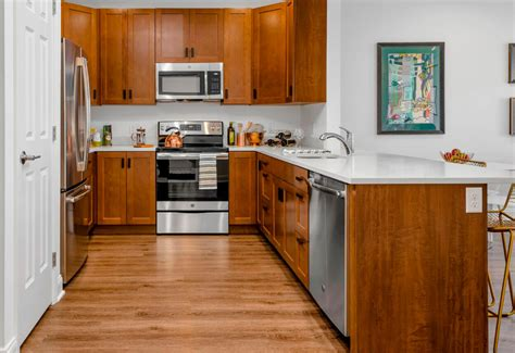 Deluxe Kitchen Cabinets by Deluxe Apartments Viking Kitchen Cabinets